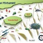 Ras Mohamed