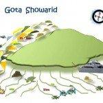 Gota Showarid