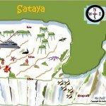 Sataya