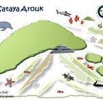 Sataya Arouk