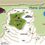 Marsa Shouna