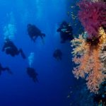 Trip Report M/Y Blue Seas 28.09.-05.10.2017